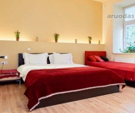 Luxury Apartment Gedimino